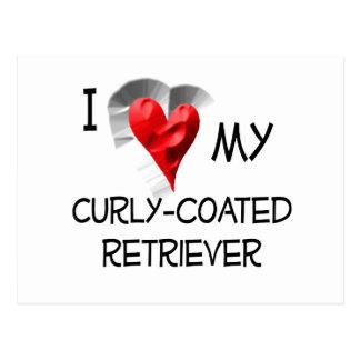 I Love My Curly-Coated Retriever Postcard