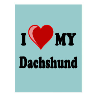 I Love My Dachshund Dog Gifts & Apparel Postcards