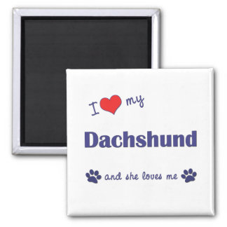 I Love My Dachshund (Female Dog) Magnet