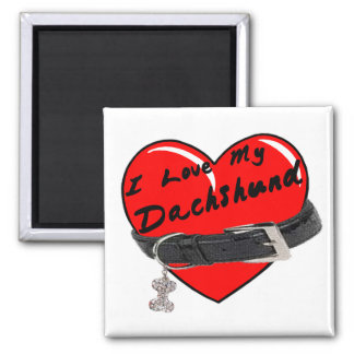 I Love My Dachshund Heart with Dog Collar 2 Inch Square Magnet