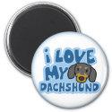 I Love My Dachshund Magnet magnet