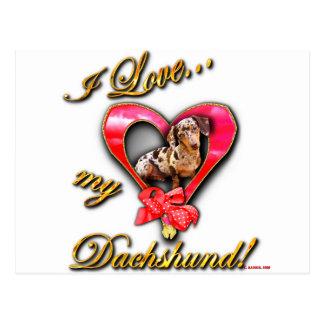 I love my dachshund postcard