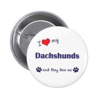 I Love My Dachshunds (Many Dogs) Pinback Button