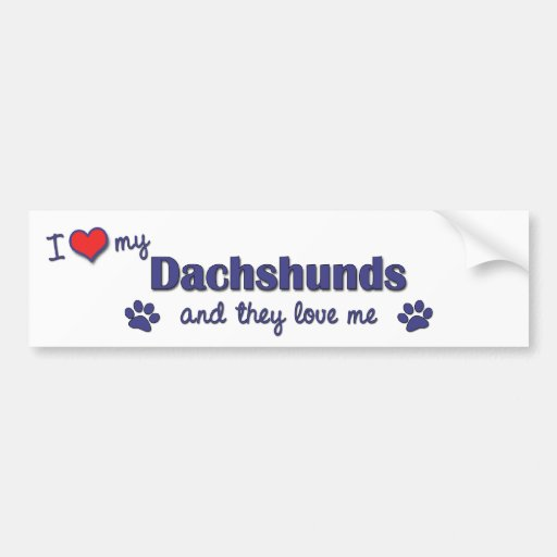 I Love My Dachshunds (Multiple Dogs) Bumper Stickers