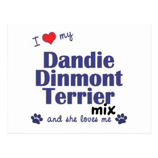 I Love My Dandie Dinmont Terrier Mix (Female Dog) Postcard