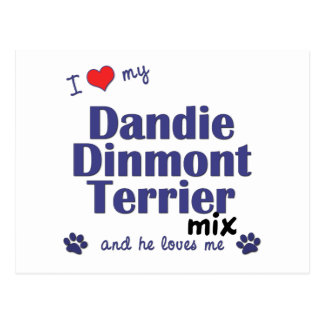 I Love My Dandie Dinmont Terrier Mix (Male Dog) Post Cards