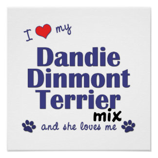 I Love My Dandie Dinmont Terrier Mix (She) Poster