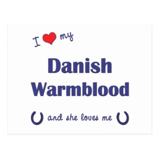I Love My Danish Warmblood (Female Horse) Postcard