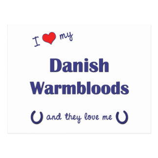 I Love My Danish Warmbloods (Multiple Horses) Postcard