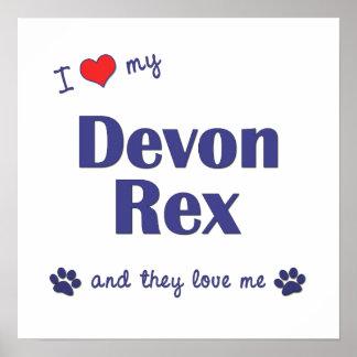 I Love My Devon Rex (Multiple Cats) Poster