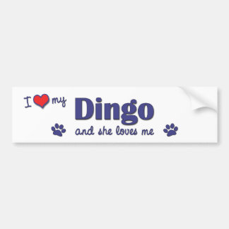 I Love My Dingo (Female Dog) Bumper Sticker