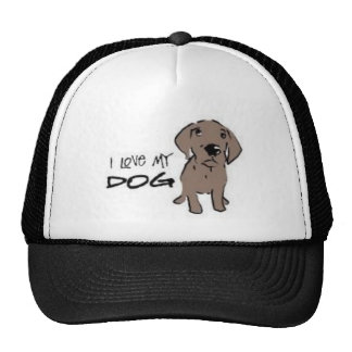 I love my dog! hats