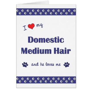 I Love My Domestic Medium Hair (Male Cat) Card
