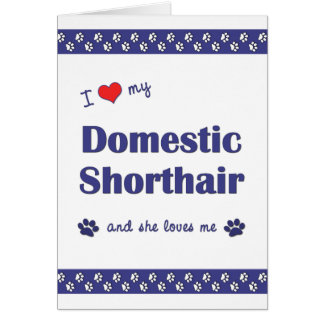 I Love My Domestic Shorthair (Female Cat) Card