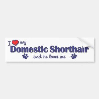 I Love My Domestic Shorthair (Male Cat) Bumper Stickers
