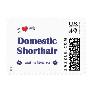 I Love My Domestic Shorthair (Male Cat) Postage Stamps
