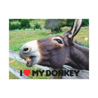 I Love My Donkey Funny Mule Farm Animal Canvas Print