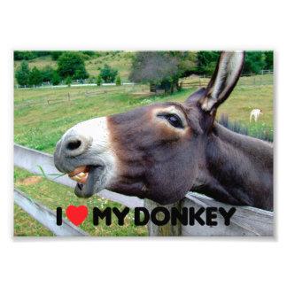 I Love My Donkey Funny Mule Farm Animal Photo Print