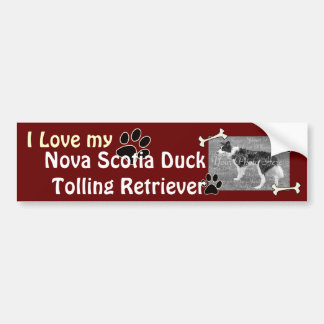 I love my Duck Tolling Retriever Bumper Sticker