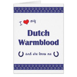 I Love My Dutch Warmblood (Female Horse) Cards
