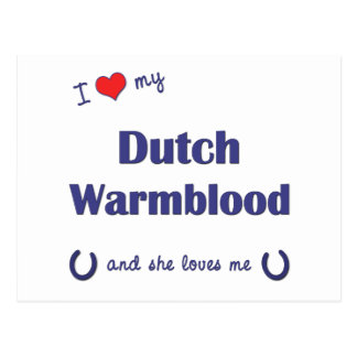 I Love My Dutch Warmblood (Female Horse) Postcards