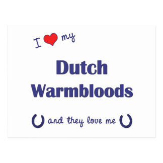 I Love My Dutch Warmbloods (Multiple Horses) Postcard