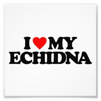 I LOVE MY ECHIDNA PHOTO ART