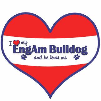 I Love My EngAm Bulldog (Male Dog) Cutout