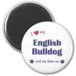 I Love My English Bulldog (Female Dog) Refrigerator Magnet