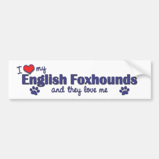 I Love My English Foxhounds (Multiple Dogs) Bumper Sticker
