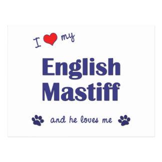 I Love My English Mastiff (Male Dog) Postcard