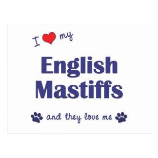 I Love My English Mastiffs (Multiple Dogs) Postcard