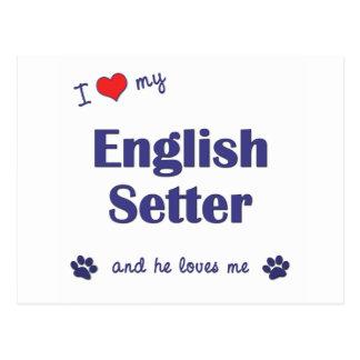 I Love My English Setter (Male Dog) Postcard