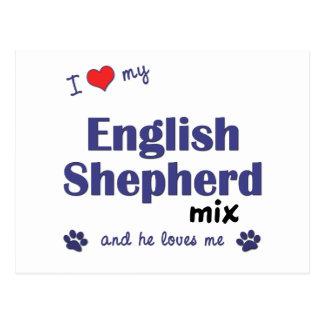 I Love My English Shepherd Mix (Male Dog) Postcard
