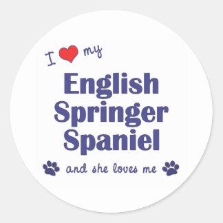 I Love My English Springer Spaniel (Female Dog) Classic Round Sticker