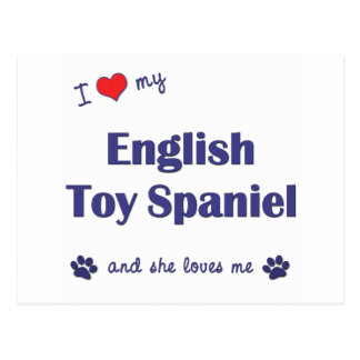 I Love My English Toy Spaniel (Female Dog) Postcard
