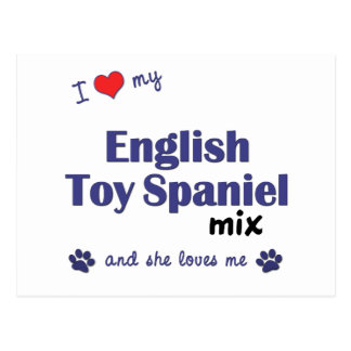 I Love My English Toy Spaniel Mix (Female Dog) Postcard