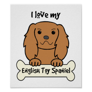 I Love My English Toy Spaniel Poster