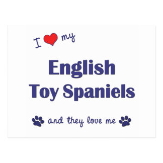 I Love My English Toy Spaniels (Multiple Dogs) Postcard