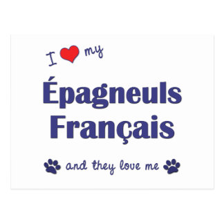 I Love My Epagneuls Francais (Multiple Dogs) Postcard