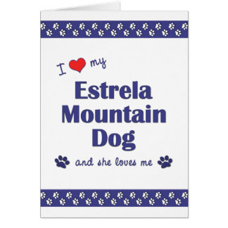 I Love My Estrela Mountain Dog Female Dog Greeting Cards