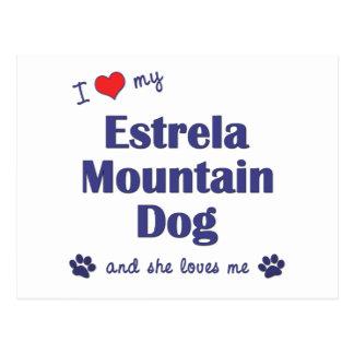 I Love My Estrela Mountain Dog Female Dog Post Cards