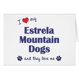I Love My Estrela Mountain Dogs Multiple Dogs Greeting Cards
