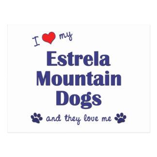 I Love My Estrela Mountain Dogs Multiple Dogs Postcards