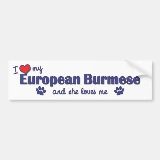 I Love My European Burmese (Female Cat) Bumper Stickers