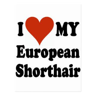 I Love My European Shorthair Cat Merchandise Postcard