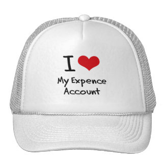 I love My Expence Account Mesh Hat