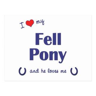 I Love My Fell Pony (Male Pony) Postcard