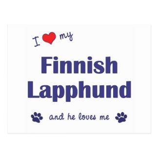 I Love My Finnish Lapphund Male Dog Postcard