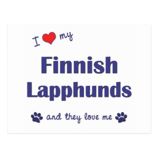 I Love My Finnish Lapphunds (Multiple Dogs) Postcard